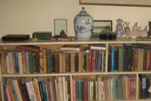 One of our bookshelves.